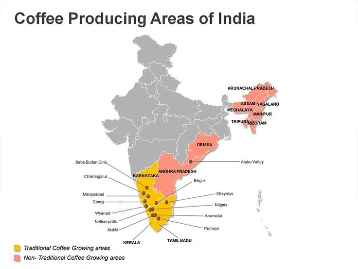 Coffee growing regions in India.