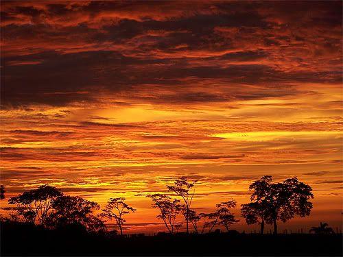 Amanecer llanero, Arauca