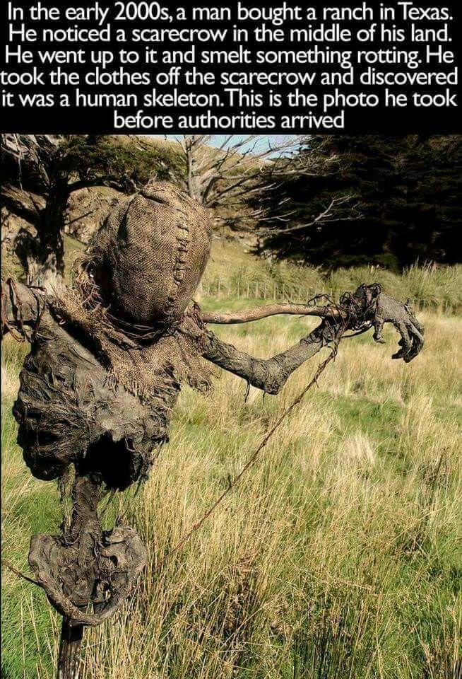 bogus story interesting idea for prop - Strange Halloween Facts