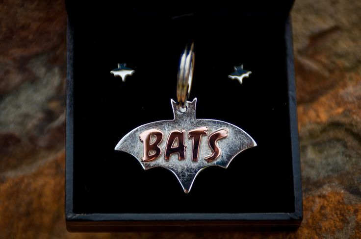Bats the dog has a new collar pendant, and Bat's owner has a matching set of bat studs. By The Rolling Mill, Wellington, New Zealand.