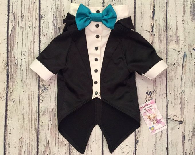 Black satin  dog wedding attire Formal suit for dog with aquamarine bow Evening dog outfit Swallow-tailed coat for dog Birthday dog