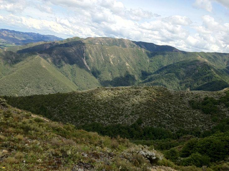 Manuka mountains.