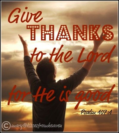Grateful Hearts: Count Your Blessings - by Virginia Lieto - Do you have a grateful heart? When did you last count your blessings? Read to learn what I am thankful for and why it is important to give thanks to God. Visit http://virginialieto.com.