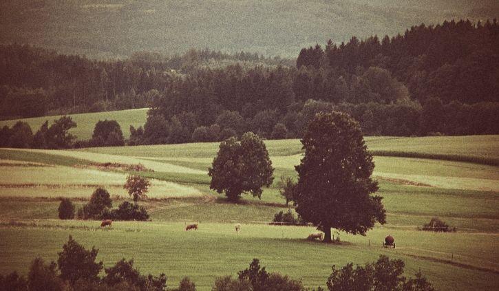 landscape #northeastbohemia #czechrepublic