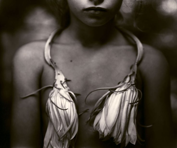Sally Mann (American, b. 1951)Night Blooming Cereus, 1988©Sally Mann/Courtesy of Edwynn Houk Gallery