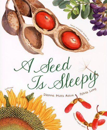 A Seed Is Sleepy by Dianna Hutts Aston http://smile.amazon.com/dp/0811855201/ref=cm_sw_r_pi_dp_19Gfxb027NWK1