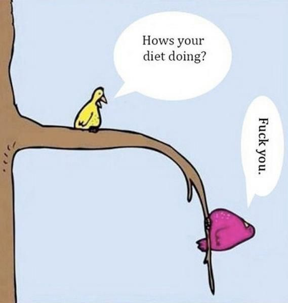 so it goes fat people saying they are on a diet.