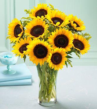 Sunflower Flower Bouquet