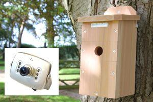 Discovery nest box camera system