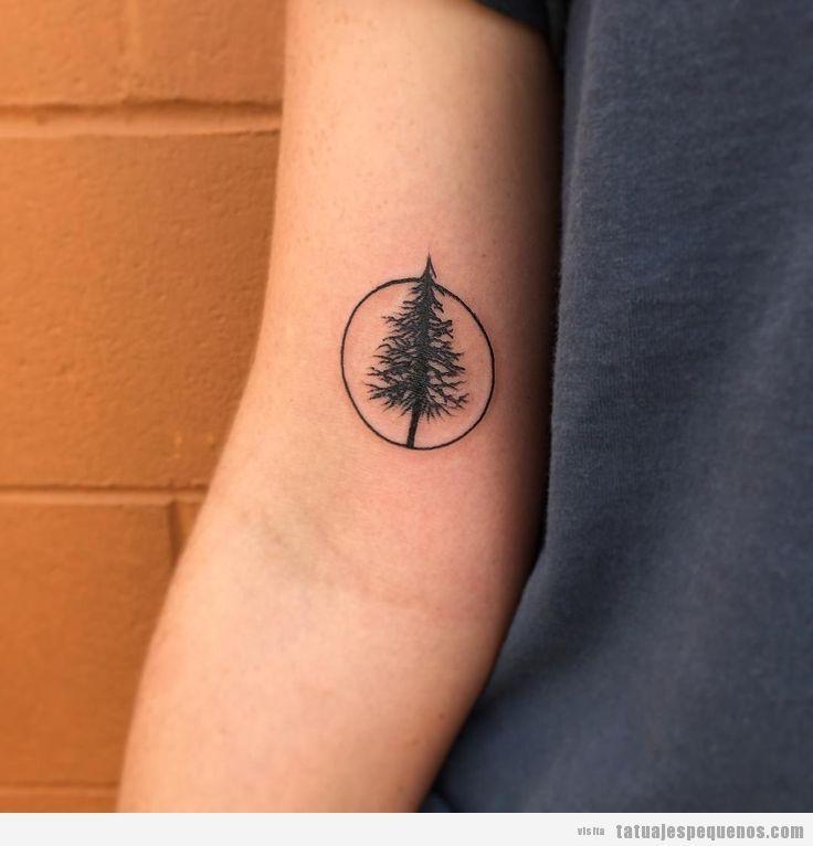 Tatuajes pequeños de árboles perennes como abetos y pinos para hombres, mujeres y parejas.