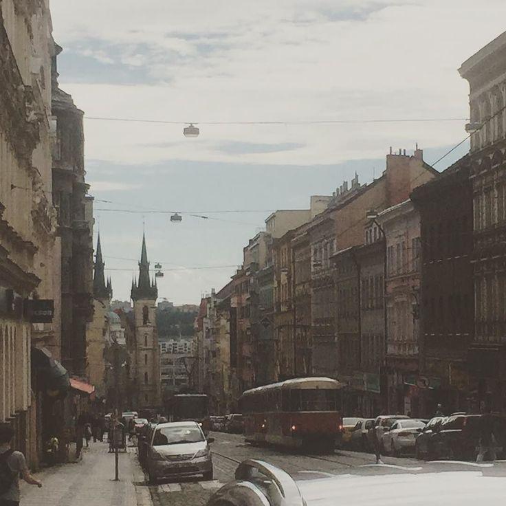 Как я соскучился по трамваям    Но счастливых билетиков в Праге нет  #praha #prague #prag #czech #juni #summer #reisen #urlaub #dovokena #cerven #лето #отпуск #встреча #друзья #чехия #прага #2016