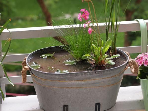 Ein Miniteich lässt sich einfach und schnell für den eigenen Balkon oder Garten anlegen. So wird's gemacht! OBI Selbstgemacht! Blog. Selbstbauanleitung für jedermann.