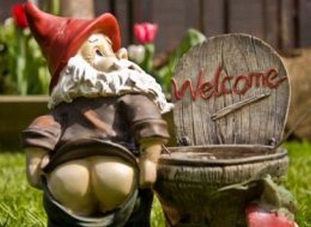 Funny Garden Gnomes: 65 Best Garden Gnomes Images On Pinterest