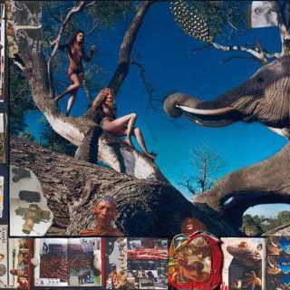 Der Pirelli-Kalender 2009 von Peter Beard zeigte u.a. Daria Werbowy, Isabeli Fontana und Mariacarla Boscono als wilde Amazonen mit Elefanten.