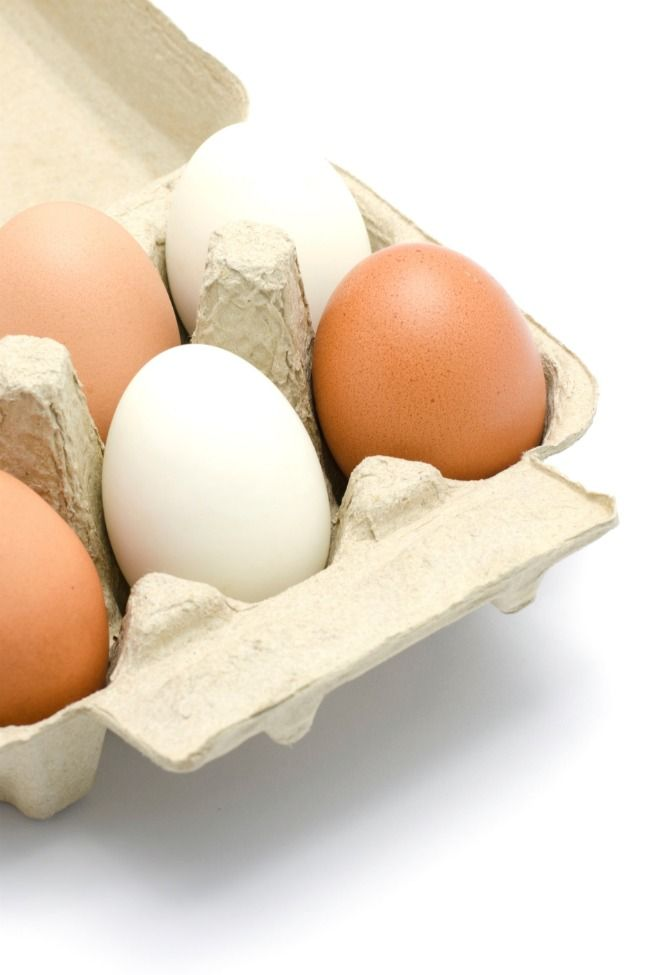 What is Diversity? {Egg Activity for Martin Luther King Jr. Day} - Kids Activities Blog