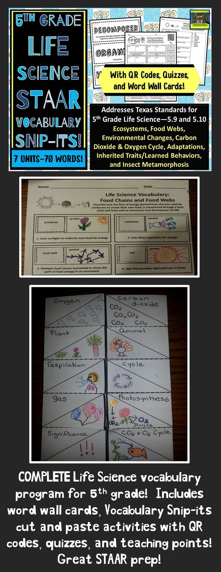 5th grade life science staar adaptations food webs carbon oxygen cycle pdf cut and paste. Black Bedroom Furniture Sets. Home Design Ideas