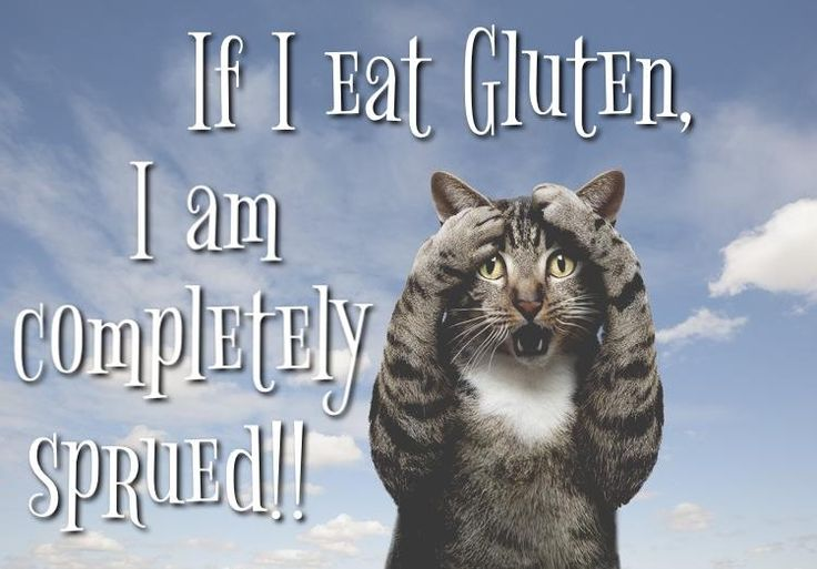 400+ Best Images About Gluten Free Memes, Quotes, And