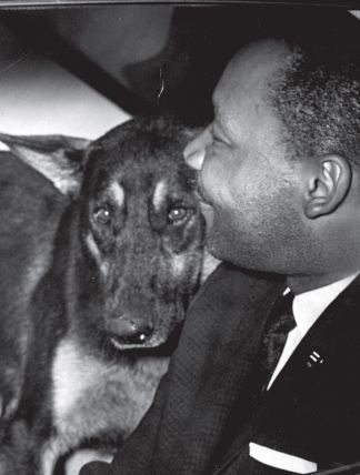 """Martin Luther King Jr and his dog: """"Never, never be afraid to do what's right, especially if the well-being of a PERSON or ANIMAL  is at stake. Society's punishments are small compared to the wounds we inflict on our soul when we look the other way.""""   ― Martin Luther King Jr."""