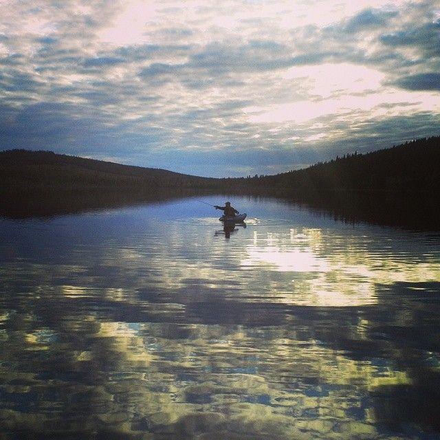 Mayfly hatch, Sorselefisket, Sorsele in Swedish Lapland #flyfishing #sorsele