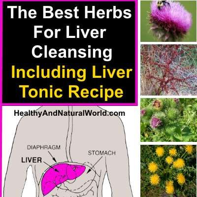 6 Herbs For A Super Powered Liver Detox Milk Thistle