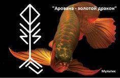 http://www.liveinternet.ru/users/5057605/post349909292/