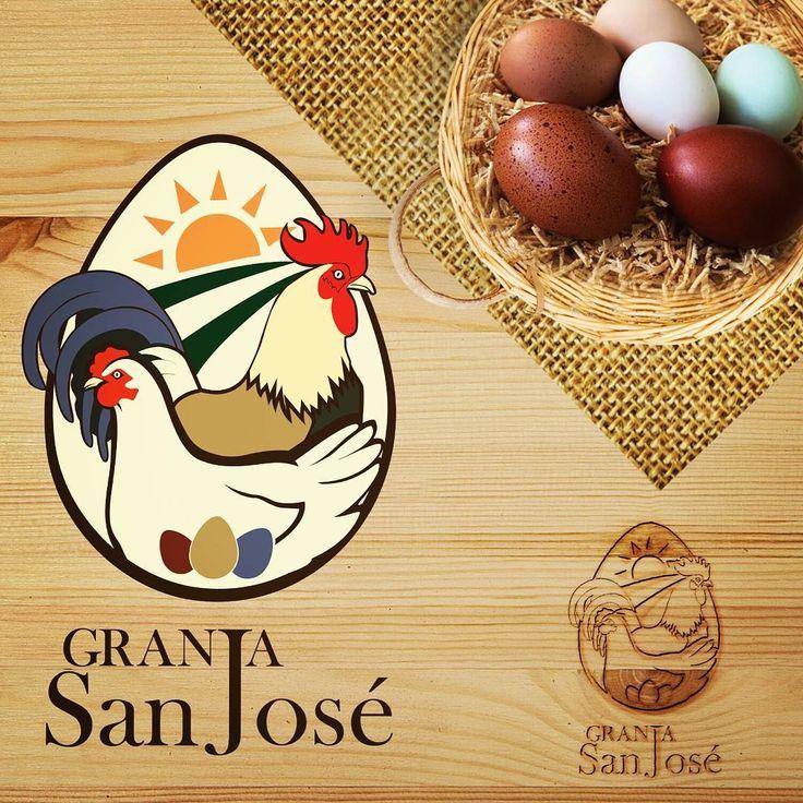 Imagotipo Cliente: Granja San Jose Descripción: Este Logo fue para otro cliente de México se trata de una Granja que se dedica a la venta de huevos. Este cliente me mando varias fotos de sus gallinas y sus gallos para que tuvieran los colores exacto en su logo y sobre todo los huevos. En la presentación esta una foto real de los huevos que me envió. Hermosos en mi vida había visto algunos de ellos. #GranjaSanJose #Mexico #LeonorMiserol #Logotipo #Brand #farm #egg Leonor Miserol