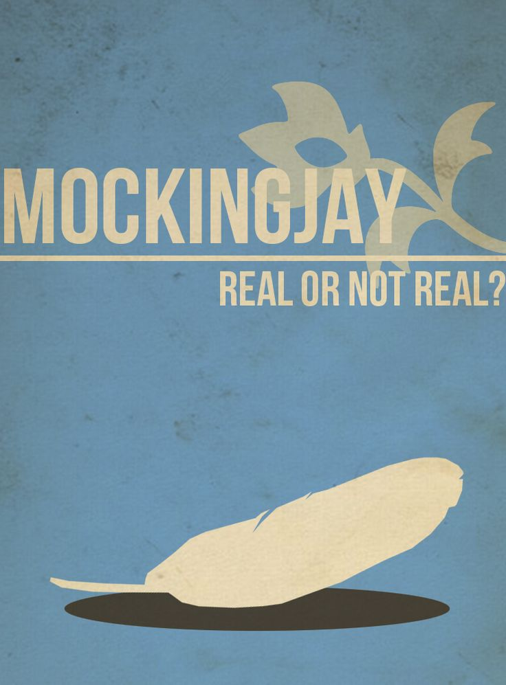 Mockingjay - Real or Not Real?