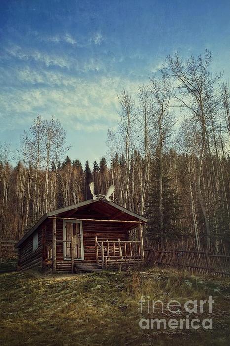 Robert Service Cabin in Dawson City, Yukon.