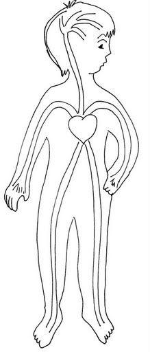el corazón fichas infantiles del cuerpo humano para imprimir gratis para niños