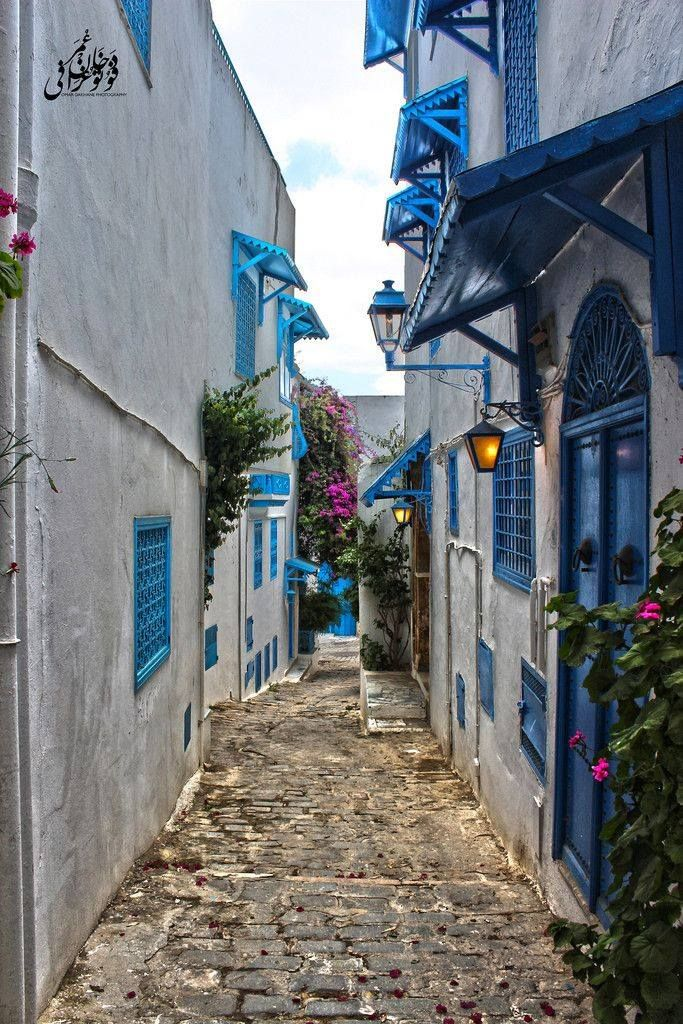 a history and description of sidi bou said a town in tunisia Full-day tour of carthage, sidi bou said and bardo museum from tunis  have  revealed five-story homes, sewage systems, and the remains of city walls that.