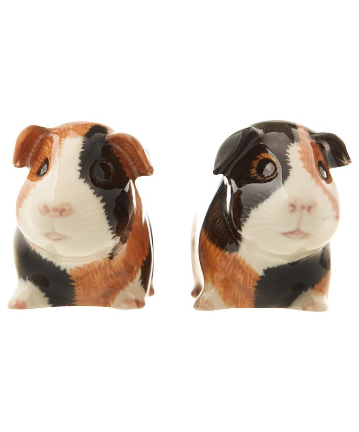 Quail Guinea Pig Salt And Pepper Shakers Kitchenware By