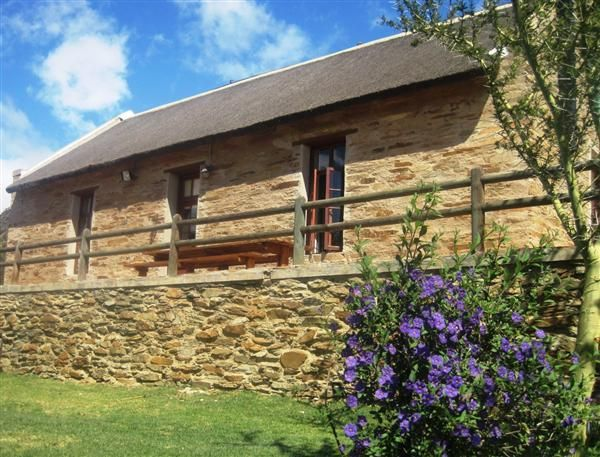 Appelhuis - pet friendly cottage in restored apple shed in Barrydale, 7km out of town