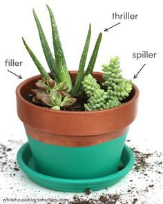 the RIGHT way to make a succulent garden and a tutorial on how to make this color blocked planter