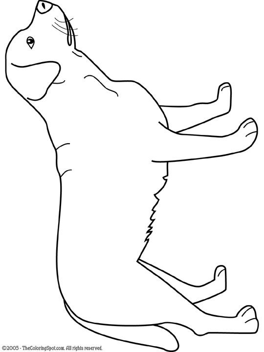 choclate lab coloring pages - photo#22