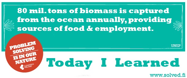 TIL: Over 80 mil. tons of biomass is captured from the ocean annually, providing sources of food & employment.