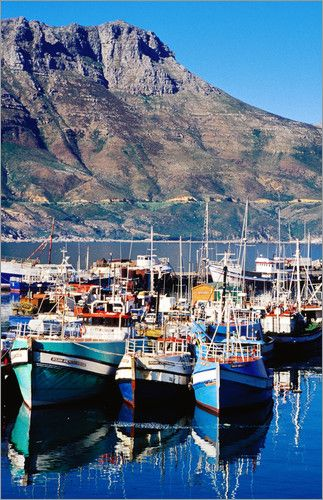 Fishing boats in Hout Bay Marina, Western Cape, South Africa