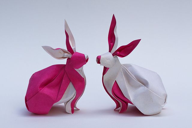 Twin Rabbits   NGUYỄN Hùng Cường