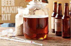 Kit para preparar tu propia cerveza de Brooklyn Brew