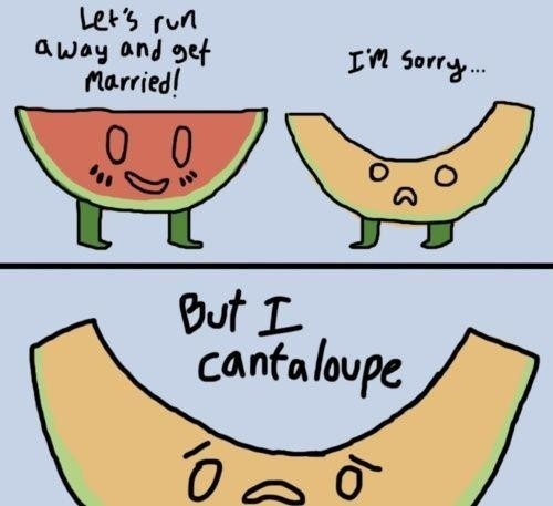 CANTALOUPE!!! stuff-i-love: Letting Running Away, Fruit Puns, Cheesy Jokes, So Funnies, Cantaloupe, Corny Jokes, Terribl Puns, Love Puns, Food Puns