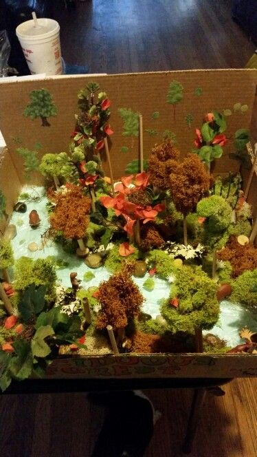 17 Best images about Dioramas for