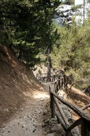 Photo of Samaria Gorge National Park, Crete. Same place as horsey-donkeys