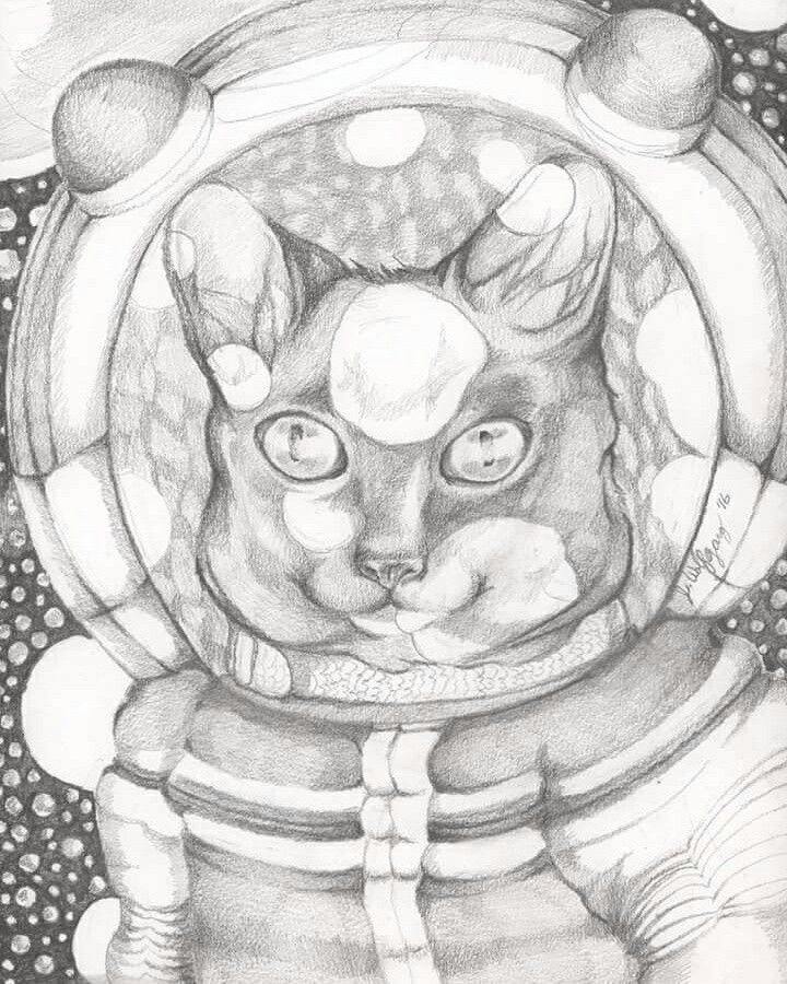 Illustration by Jen Wolfgang. Space Cat. Graphite on paper. 9x12 in. December 2016. A whimsical, surreal portrait view of an astronaut cat exploring the depths of space.