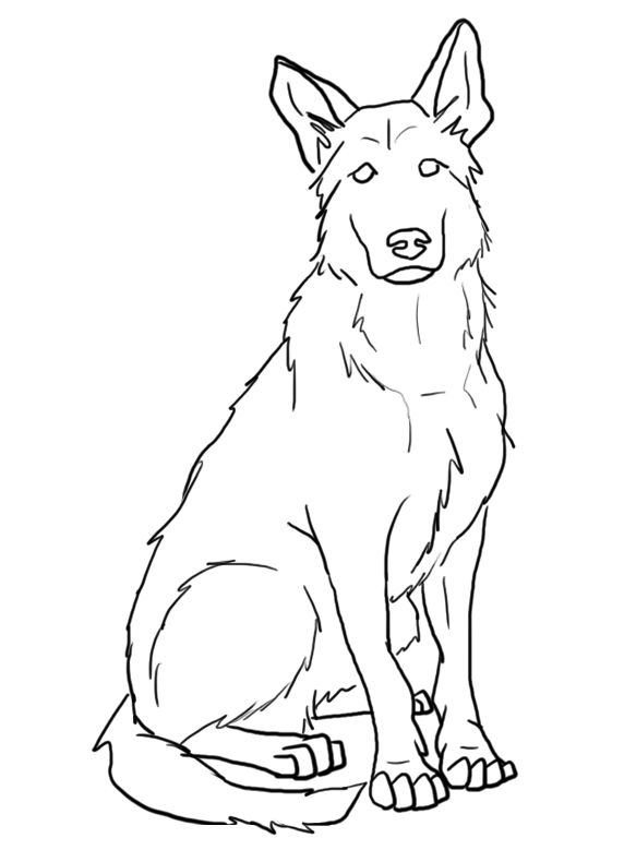 German Shepherd Coloring Pages Best Coloring Pages For Kids Dog Sketch German Shepherd Painting Dog Drawing