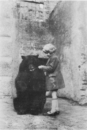 "Young Christopher Robin with  ""Winnie"" at the London Zoo where he befriended the bear while feeding him condensed milk on one of his visits. (If you look closely, you will see A.A. Milne behind the bars of the bear's enclosure.)"