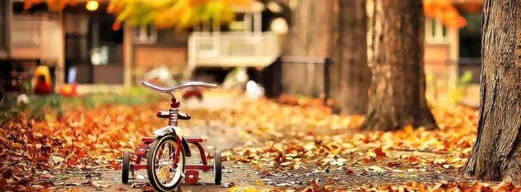 Fall Facebook Cover Photos (9)