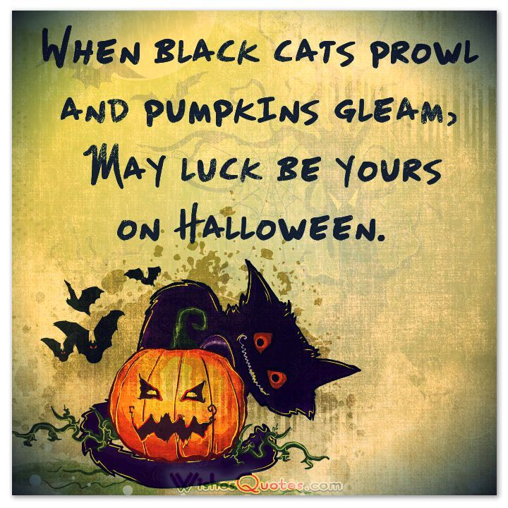 Marvelous 40 Funny Halloween Quotes, Scary Messages And Free Cards