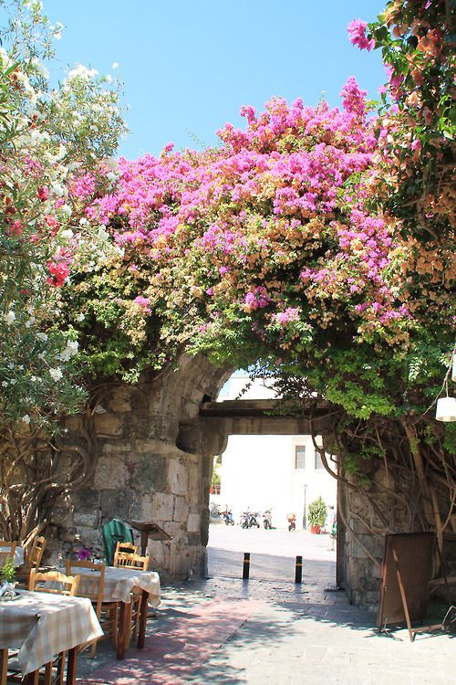 Taverna in Kos , Greece...we ate our last meal there before we flew home..LOVE KOS!!!
