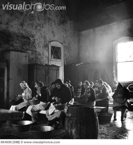 1760 Best Images About Insane Asylums, Sanitariums And The