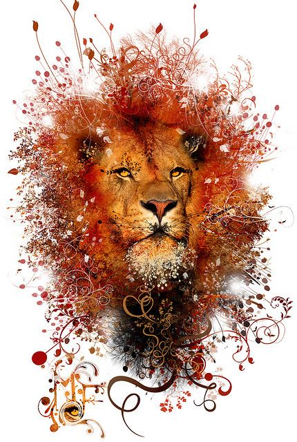 Lion! By Miguel Farfan digital art - I seriously love lion and tigers so this defiantly caught my eye
