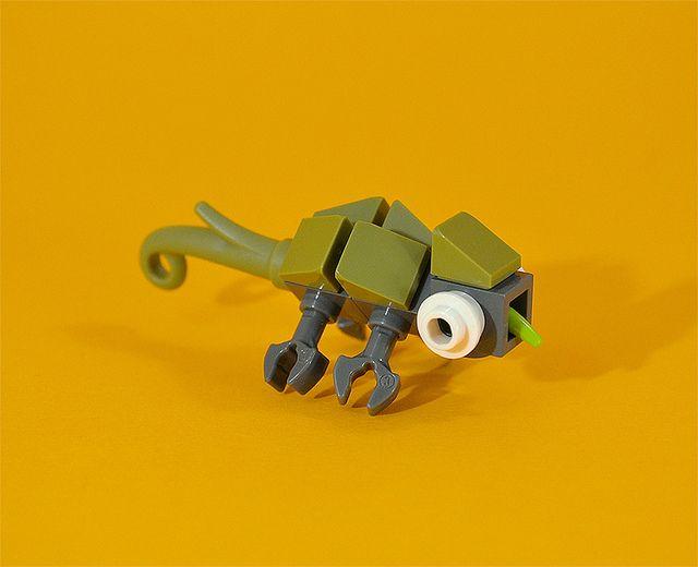 Chameleon | by captainsmog https://www.flickr.com/photos/captainsmog/12971741974/